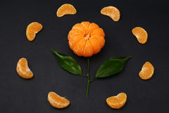 Fresh tangerines with leaves in the form of a flower on dark background. Ripe tasty mandarines with green leaves on dark background Royalty Free Stock Image