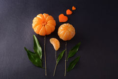 Fresh tangerines with leaves in the form of a flower on dark background. Ripe tasty mandarines with green leaves on dark background Stock Image