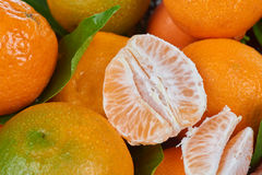 Fresh tangerines with leaves Stock Images