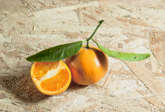 Fresh Tangerines Royalty Free Stock Photography