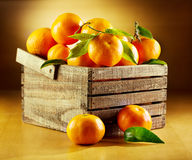 Fresh tangerines with leaves Stock Photo