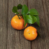Fresh tangerines with leaves on a wooden table. Royalty Free Stock Images