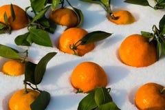 Fresh tangerines lie on the snow Stock Image