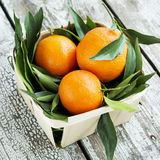 Fresh tangerines mandarins in a wicker basket Royalty Free Stock Photo