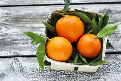 Fresh tangerines mandarins in a wicker basket Stock Image