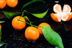 Tangerines background. Delicious and beautiful Citrus. royalty free stock photos