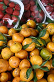 Fresh Tangerines for sale Stock Images
