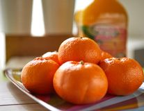 Fresh tangerines, shot in natura royalty free stock photo