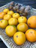 Fresh tangerines and walnuts Royalty Free Stock Images