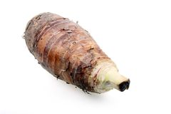 Fresh taro. Taro is a nutrient-rich foods and can be cooked many different ways Stock Image