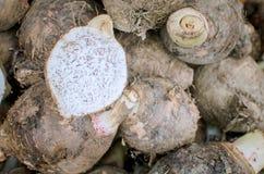 Fresh taro in the market Stock Image