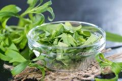 Fresh Tarragon in a small bowl royalty free stock photo