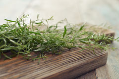 Fresh tarragon Stock Photos