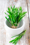 Fresh tarragon. On a wooden table stock images