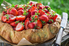 Fresh tart with strawberries in sunny day Stock Image