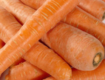 Fresh taste carrots as food background. Royalty Free Stock Photo