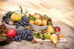Eating healthy seasonal food, fresh tasteful autumn organic fruit. Fresh tasteful autumn organic fruit in bowl - healthy seasonal food Stock Photo