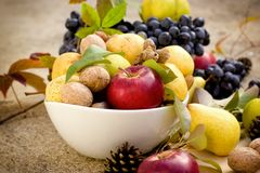 Fresh tasteful autumn organic fruit in bowl - healthy seasonal food. Eating healthy seasonal food, fresh tasteful autumn organic fruit Stock Images
