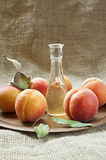 Fresh and tasty apricot fruit and apricot brandy Stock Photography