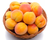 Fresh tasty apricots in a basket Royalty Free Stock Photo