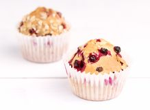 Free Fresh Tasty Baked Canberry Muffins On White Background Tasty Handmade Cupcakes Royalty Free Stock Photography - 109936447
