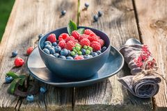 Fresh and tasty berries in blue bowl Stock Photos