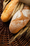 Fresh tasty bread close up Stock Images