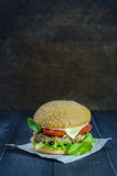 Fresh tasty burger Royalty Free Stock Images