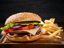 Fresh tasty burger and french fries Stock Photo