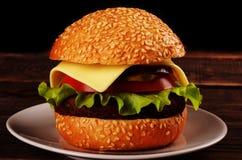 Fresh tasty burger Stock Photos