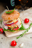 Fresh tasty burger. With vegetables and meat Stock Photos