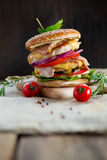 Fresh tasty burger. With vegetables and meat Stock Image