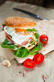 Fresh tasty burger. With vegetables and meat Stock Images