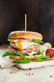 Fresh tasty burger. With vegetables and meat Stock Photo