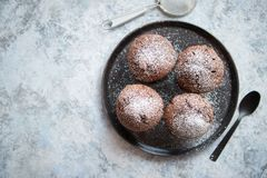 Fresh and tasty chocolate muffins served on plate stock photography