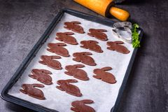 Chocolate rabbits. A fresh and tasty chocolate rabbits Stock Photos