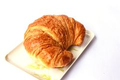 Fresh and tasty croissant on plate. With white background Stock Photography