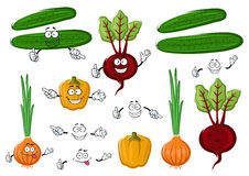 Fresh and tasty farm vegetables Royalty Free Stock Photography