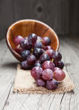 Fresh and tasty grapes Stock Photos
