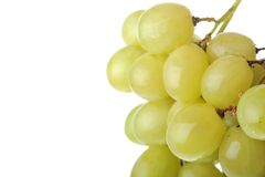 Fresh and tasty green grapes Stock Photo