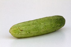 A fresh and tasty green vine ripened garden grown cucumber isolated on white Royalty Free Stock Images