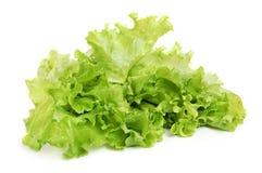 Fresh tasty greens royalty free stock photos