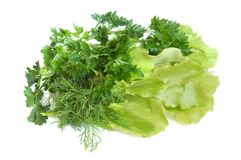 Fresh tasty greens Royalty Free Stock Photo