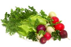 Fresh tasty greens and Royalty Free Stock Photos