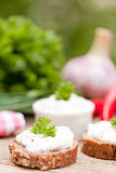 Fresh tasty homemade cream cheese and herbs with bread Royalty Free Stock Photo