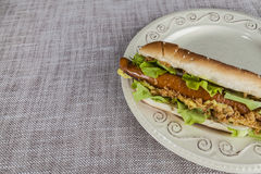 Fresh tasty hot dog with fried onions and fresh lettuce with mustard on a porcelain plate Stock Images
