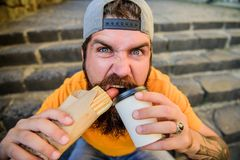 Always fresh and tasty hot dog. Hungry guy biting hot dog and sipping coffee. Bearded man eating unhealthy hot dog royalty free stock image