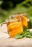 Fresh tasty hot tea lemon and mint outdoor in summer Stock Photos