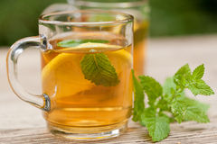Fresh tasty hot tea lemon and mint outdoor in summer Royalty Free Stock Photography