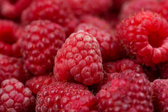 Fresh and tasty looking raspberries on a wooden table Royalty Free Stock Photos